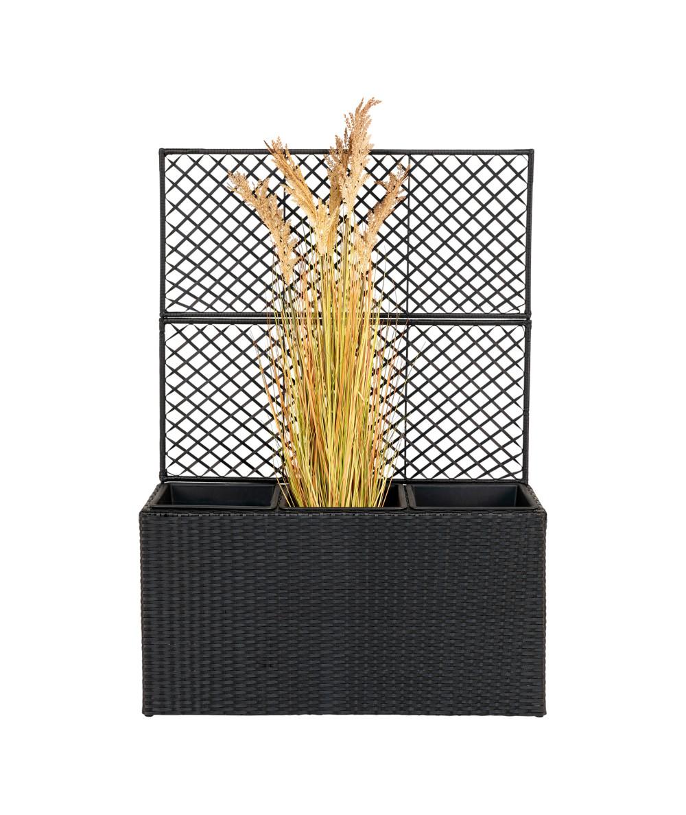 Plantekasse med espalier